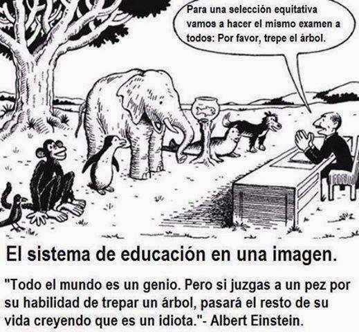 sistema de educación