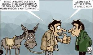 burro afiliar a pp