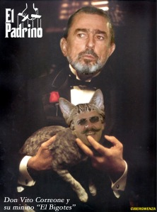 Don Vito y su minino El Bigotes